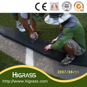 Football Artificial Grass Approved SGS pictures & photos