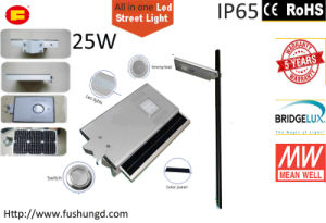 25W Integrated Solar LED Street Light with Road