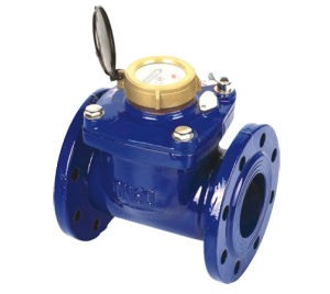 "Detachable Woltman Water Meter (2"" to 8"") pictures & photos"