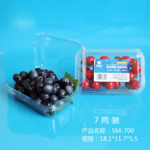 Biodegradable Plastic Eco-Friendly Fresh Fruit Container with Label pictures & photos
