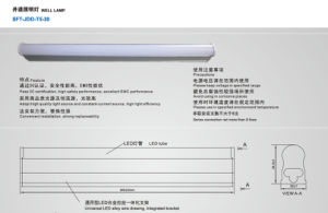 High Quality Elevator Well Lamp (SFT-JDD-T5-30)