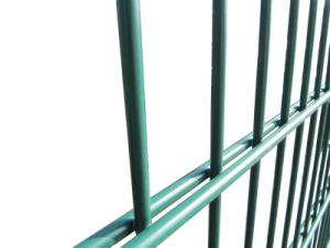 Powder Coating Double Wire Welded Fence pictures & photos