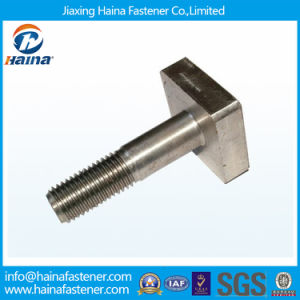 M4~M52 Stainless Steel 316 304 Square Head T Bolt pictures & photos