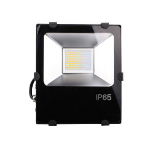 100W LED Flood Light with Philips LED and Weanwell Driver (E334687)