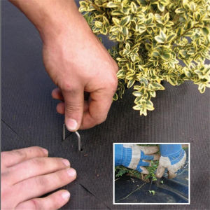 Hot Sale SOD Staples Nail Metal Ground Staples From China pictures & photos