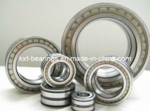 SL181884 Full Complement Roller Bearing pictures & photos