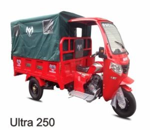 3 Wheels Cargo Tricycle 250cc, 300cc, 350cc, 450cc with Cabin