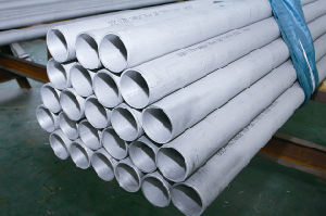 A213 Stainless Steel Tube/Pipe (BNJIS-004)