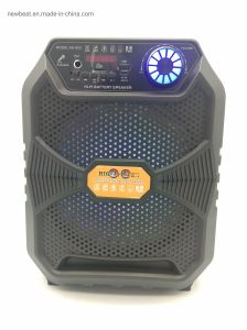 8 Inches Portable Outdoor Wireless Speaker with Microphone