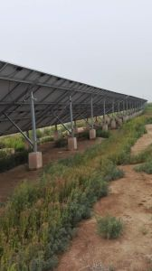 PV Systems Hot DIP Galvanized Structure, Solar Energy Mounting