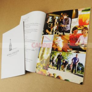 Half Cost Catalog Printing Service Booklet Printing pictures & photos