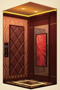Small Residential Home Elevator Lift Price Manufacturer pictures & photos
