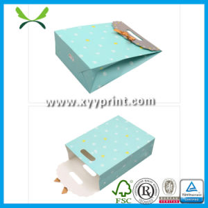 Custom Prefessional Paper Shopping Bag Manufacture in Guangzhou China pictures & photos