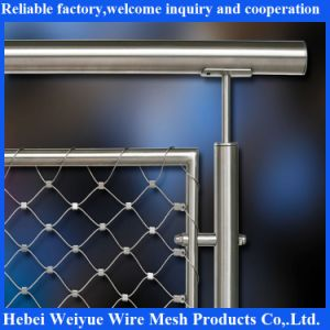 Stainless Steel Flexible Protective Net pictures & photos
