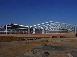 Prefabricated Steel Structure for Vegetable Market