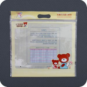 Reclosable Colorful Printed PE Zip Packaging Bag pictures & photos