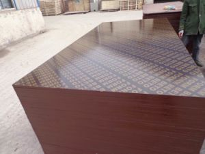Brown Film Faced Plywood/Building Material/Wood/Plywood/MDF