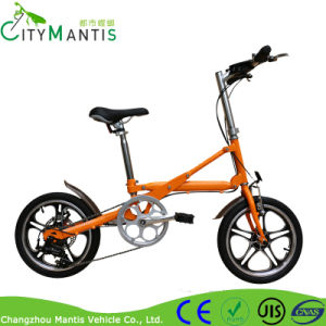 Folding Bike with 7-Speed Derailleur