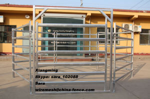 Cattle Corral Panels Livestock Fencing (XMS26) pictures & photos