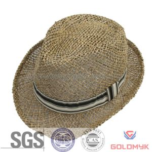 Seagrass Summer Fedora Hat pictures & photos