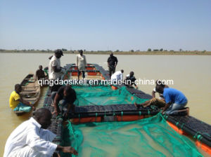 HDPE Farming Floating Africa Tilapia Culture Cages pictures & photos