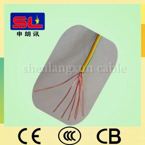 Low Voltage 2.5mm2 PVC Insulated Cable