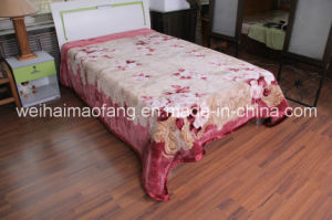 Raschel Printing Polyester Blanket (MQ-LAPB002) pictures & photos
