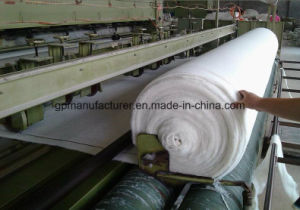 Polyester Non Woven Geotextile Used in Landfill pictures & photos