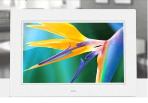 10 Inch LCD Digital Picture Frame for Advertising