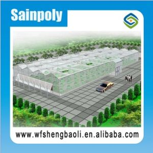 High Quality Customized Glass/Plastic Film/PC Sheet Greenhouse with Hydroponic System pictures & photos