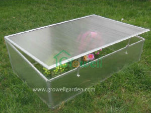 Cold Frame Greenhouse for Young Plants (C501) pictures & photos