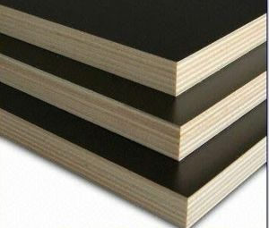 18mm Mr Glue Film Faced Plywood with Technical Data