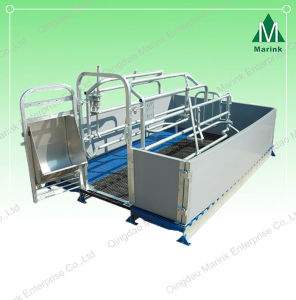 Galvanized Pig Farrowing Cratec for Sow Feeder Hot Sell pictures & photos