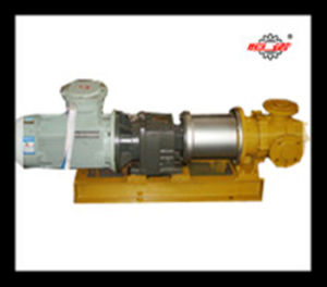Internal Gear Pump with Magnetic Coupling (NYP30)