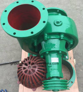 10 Inch Big Water Pump with ISO4001 Approved 250hw-8 pictures & photos