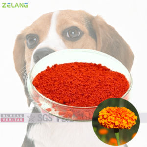 2% 4% Marigold Extract in Dog Food