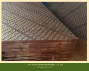Black Film Faced Plywood Film Faced Shuttering Plywood pictures & photos