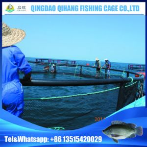 High Quality Floating Fish Net Seacages for Salmon Fish pictures & photos