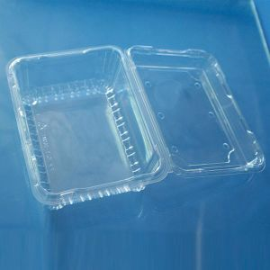 China Globle Wholesale Safety Food Absorbent Plastic Meat Trays pictures & photos