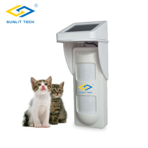 IP-65 Waterproof Outdoor Wireless Infrared Sensor with Pet Immunity Lens (OSD-40DP-P) pictures & photos
