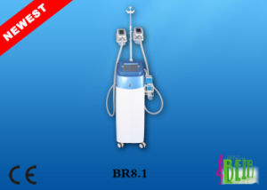 Vacuum Body Shape Fat Dissolving Lipo Freeze Fat Weight Loss Beauty Equipment pictures & photos