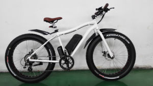 Best Sell Big Power Fat Electric Bicycle