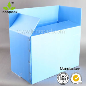 PP Hollow Sheet Packing Box pictures & photos