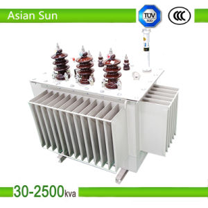 Transformer / Oil Type Voltage Transformer for Hydropower Plant pictures & photos