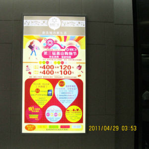 LED Advertising Display Light Box (1521)