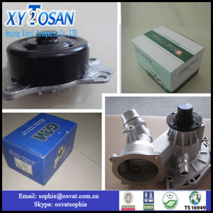 Complete Cooling System Water Pump for Peugeot 504 OEM: 120297 Gwp-05A pictures & photos