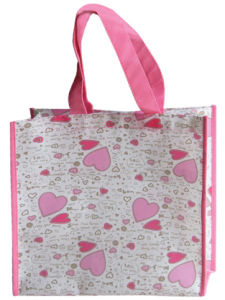 Non Woven Shopping Bag (JJJ996)