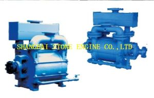 Water Ring Vacuum Pump pictures & photos