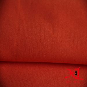 Nylon Spandex Cotton Fabric Combed Cotton for Shirt pictures & photos