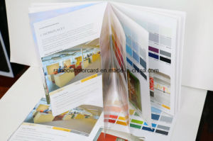 Professional Building Coating Decoration Brochure pictures & photos
